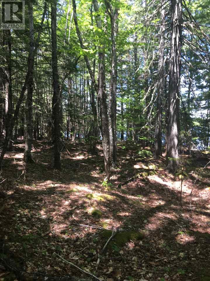 For Sale: 9a Lot Road, Buckfield, NS Home for $36,000. See 11 photos!