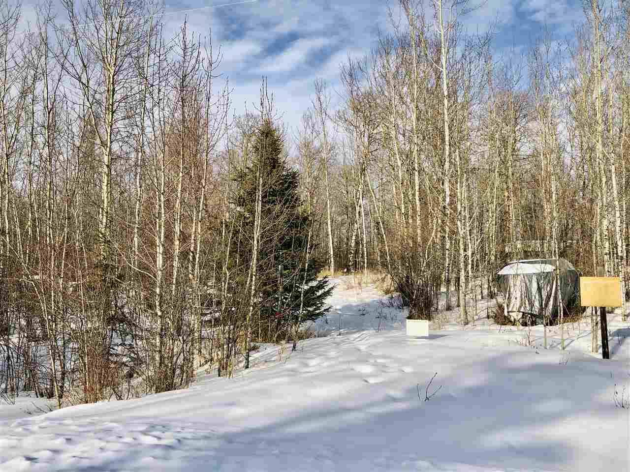 Residential property for sale at 9 Pleasant Valley  Rural Wetaskiwin County Alberta - MLS: E4188166