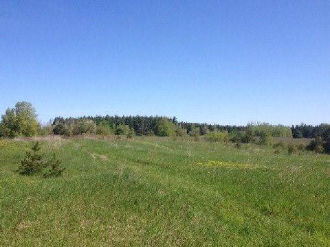 Residential property for sale at 957269 7th Line East Line Mulmur Ontario - MLS: X4747714