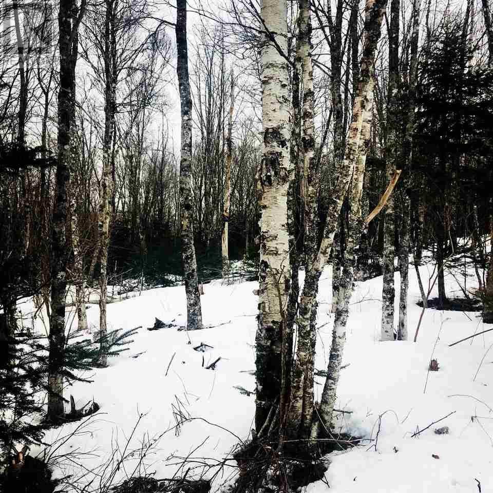 Home for sale at  B-79 & B-1 Rd East Uniacke Nova Scotia - MLS: 202004604