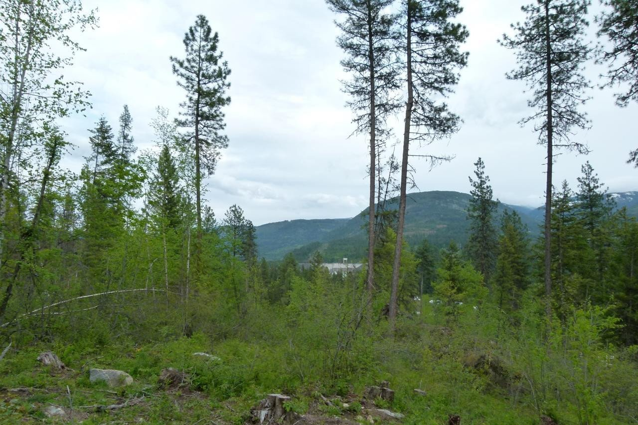 Residential property for sale at B Sadler Road  South Slocan British Columbia - MLS: 2451916