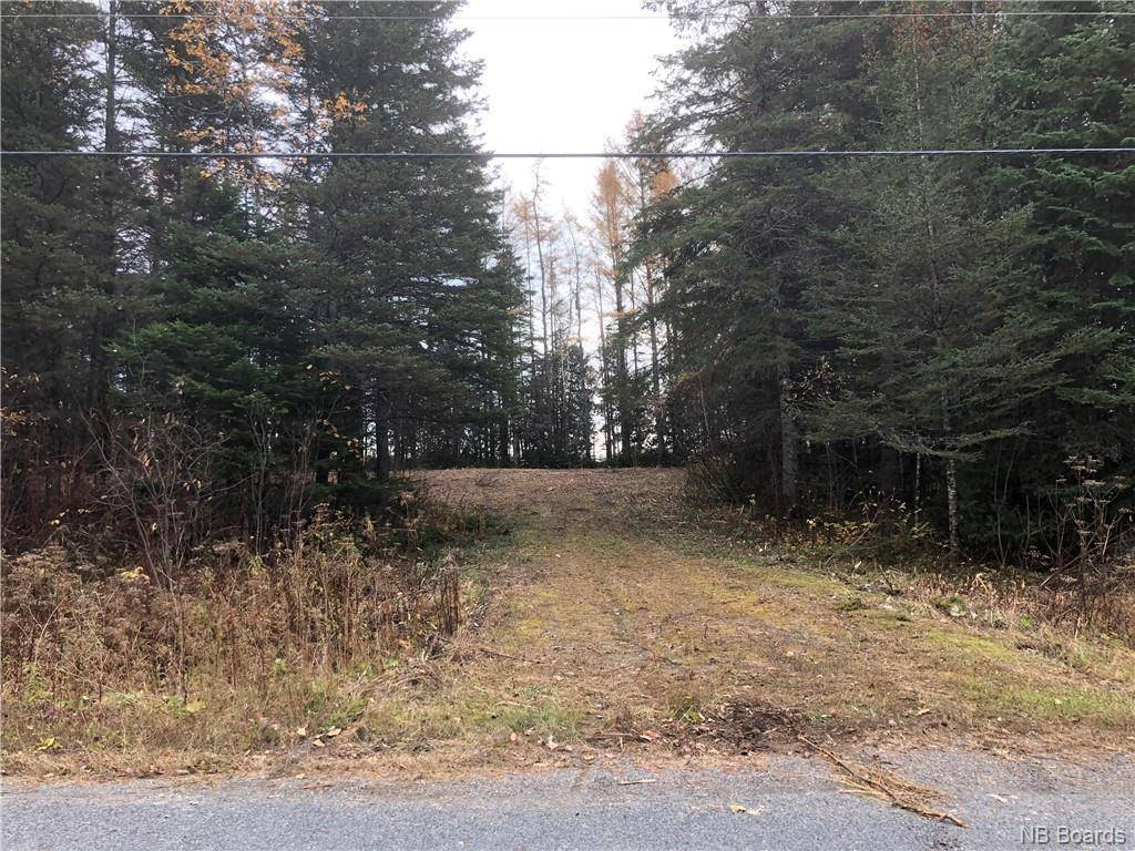 Residential property for sale at  Coombes Rd Saint-leonard New Brunswick - MLS: NB035393