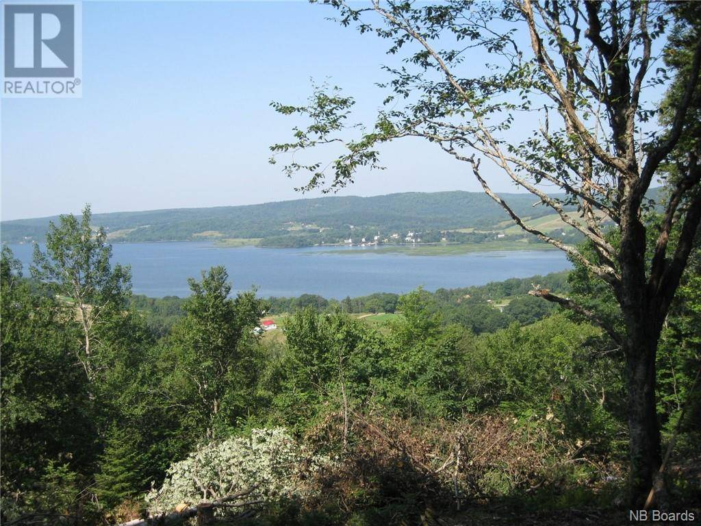 Residential property for sale at  Discovery Ln Midland New Brunswick - MLS: NB038026