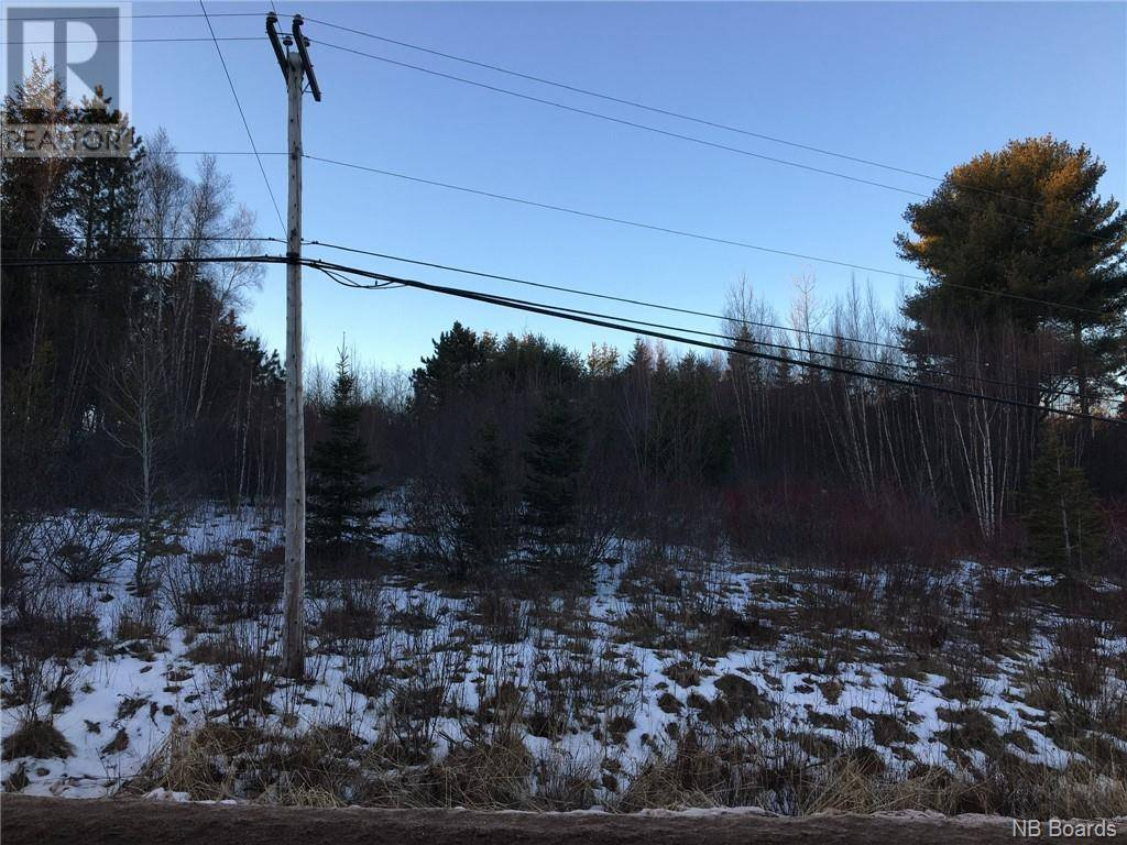 Residential property for sale at  Hill Rd Sussex New Brunswick - MLS: NB040545