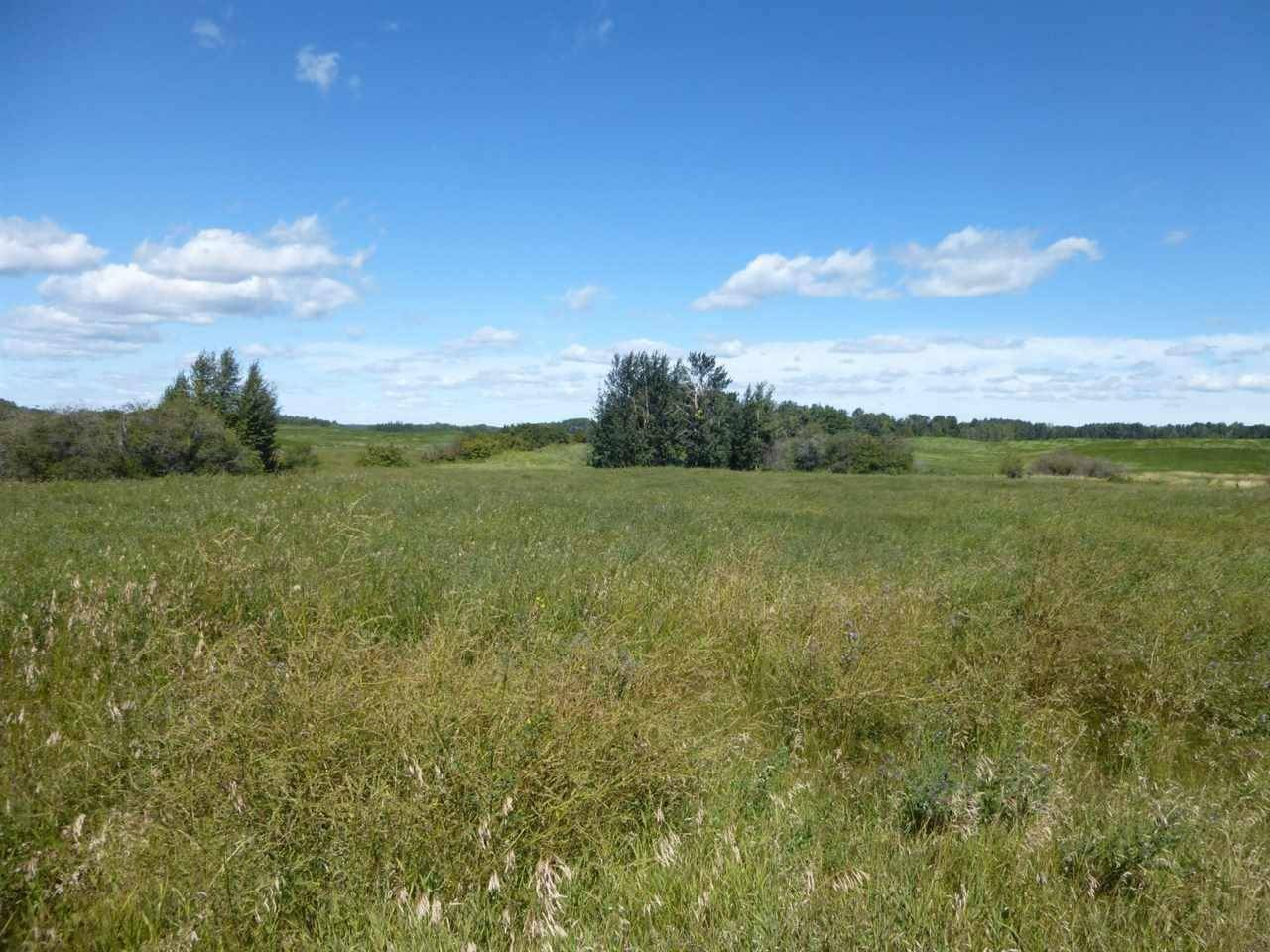 Hwy 770 Highway, Rural Parkland County | Image 2