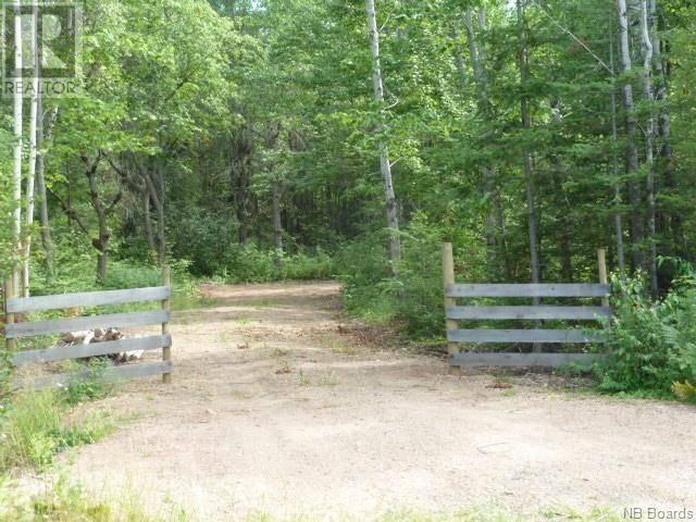 Home for sale at  Bronson Rd Unit Land Chipman New Brunswick - MLS: NB040795