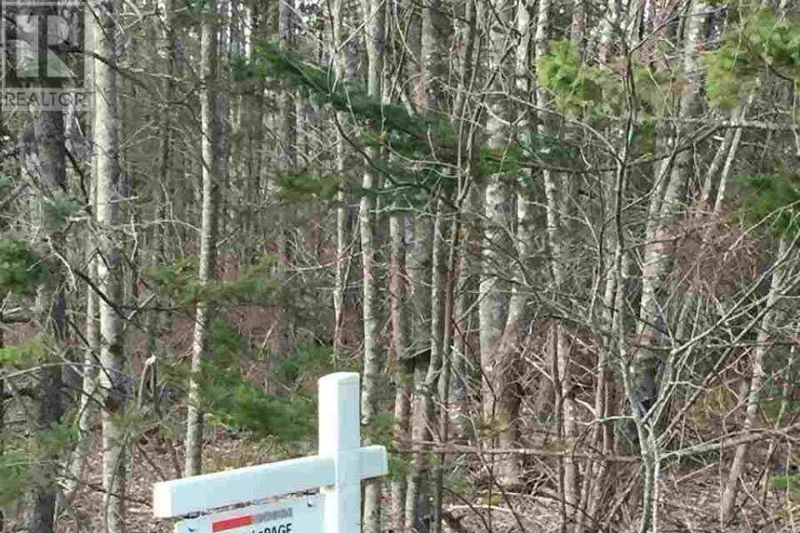 Residential property for sale at 1 Birch Hill Dr Unit LOT Nine Mile River Nova Scotia - MLS: 201912448
