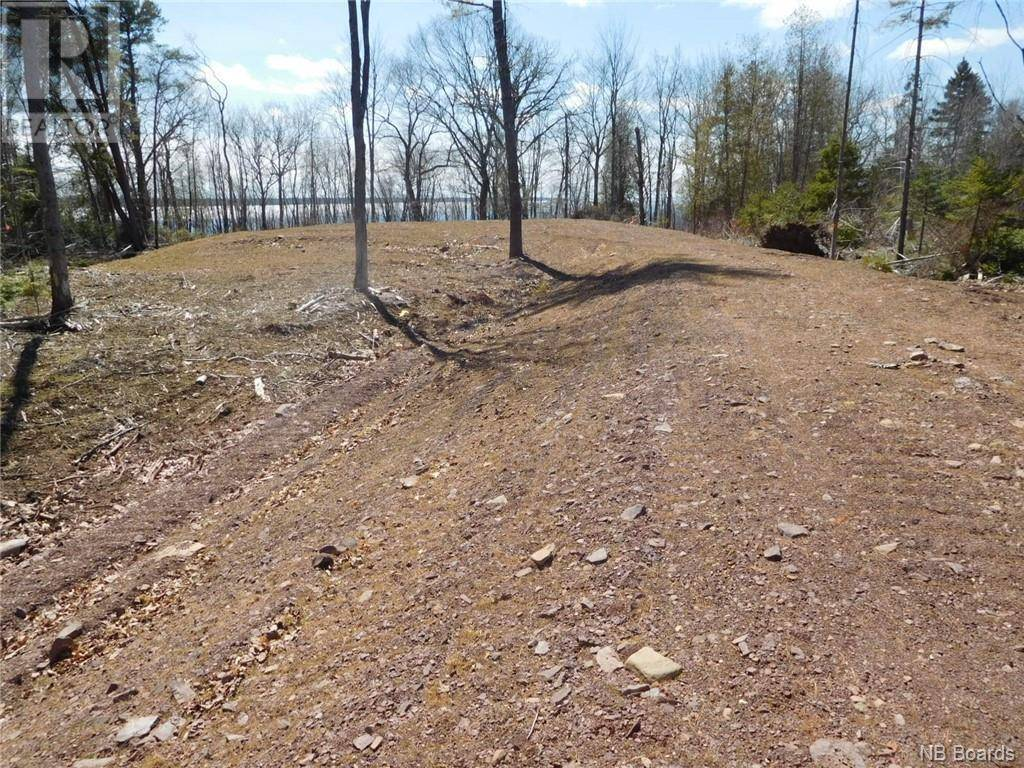 Residential property for sale at  Cox Point Rd Unit Lot 1 Cumberland Bay New Brunswick - MLS: NB042460