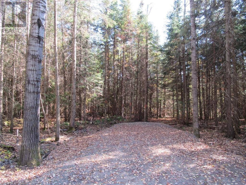Residential property for sale at  Fern Glen Rd Unit Lot 1 Perry Ontario - MLS: 227800