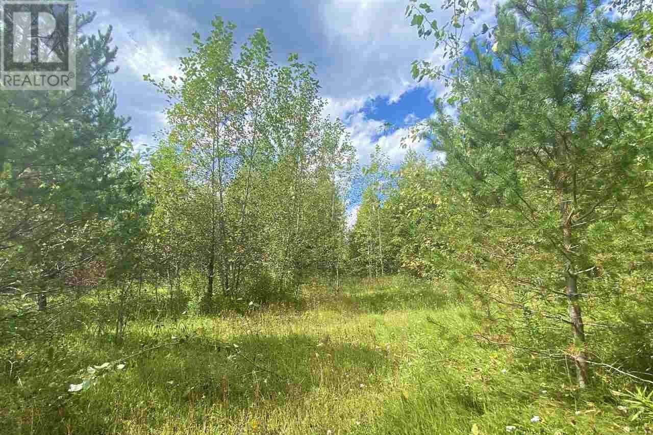 Residential property for sale at 1 Small Creek Unit LOT Valemount British Columbia - MLS: R2490177