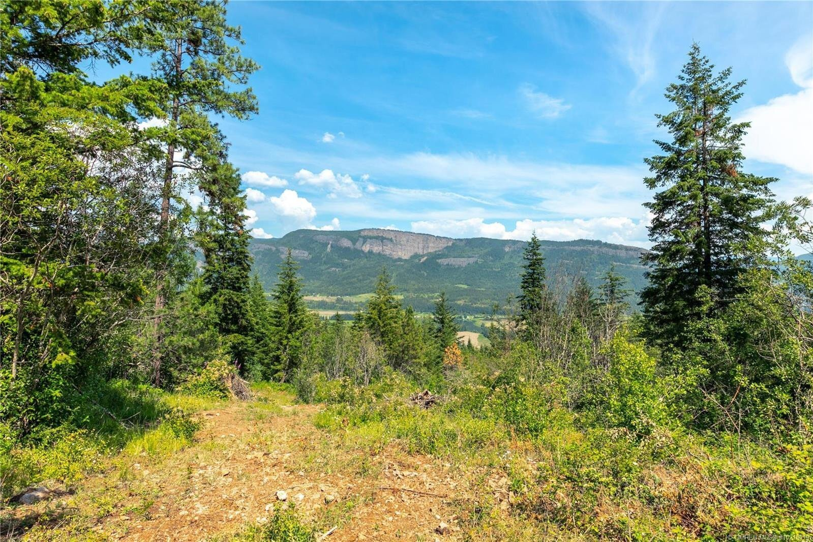 Home for sale at Lot 1 Terry Rd Enderby, Bc British Columbia - MLS: 10218019
