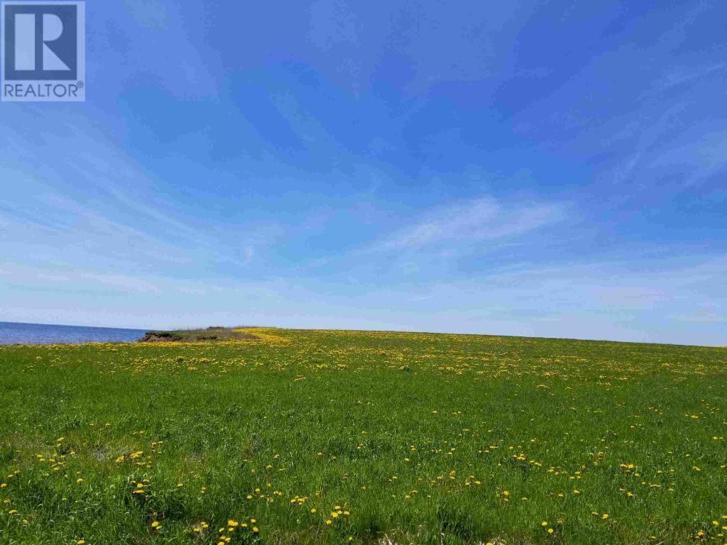 Buliding: Point View Lane, Earnscliffe,