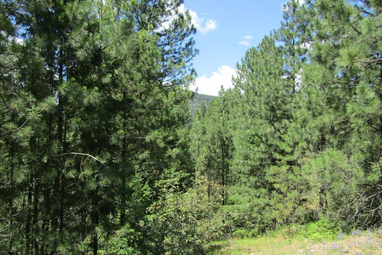 Lot 10 Prospect Drive , Grand Forks   Image 2