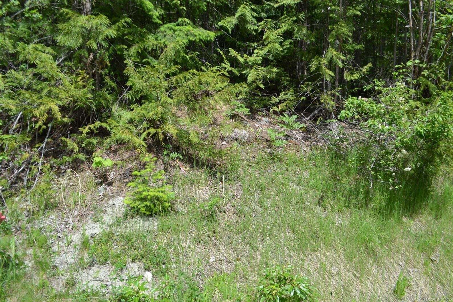 Residential property for sale at Lot 129 Aspen Rd Anglemont British Columbia - MLS: 10206928