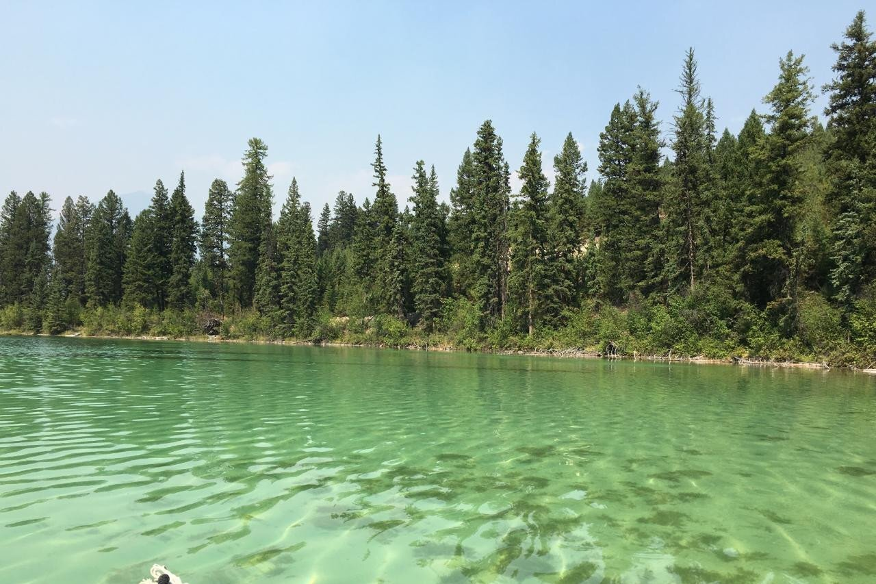 Home for sale at - Whitetail Lake Road  Unit Lot 15 Canal Flats British Columbia - MLS: 2453417