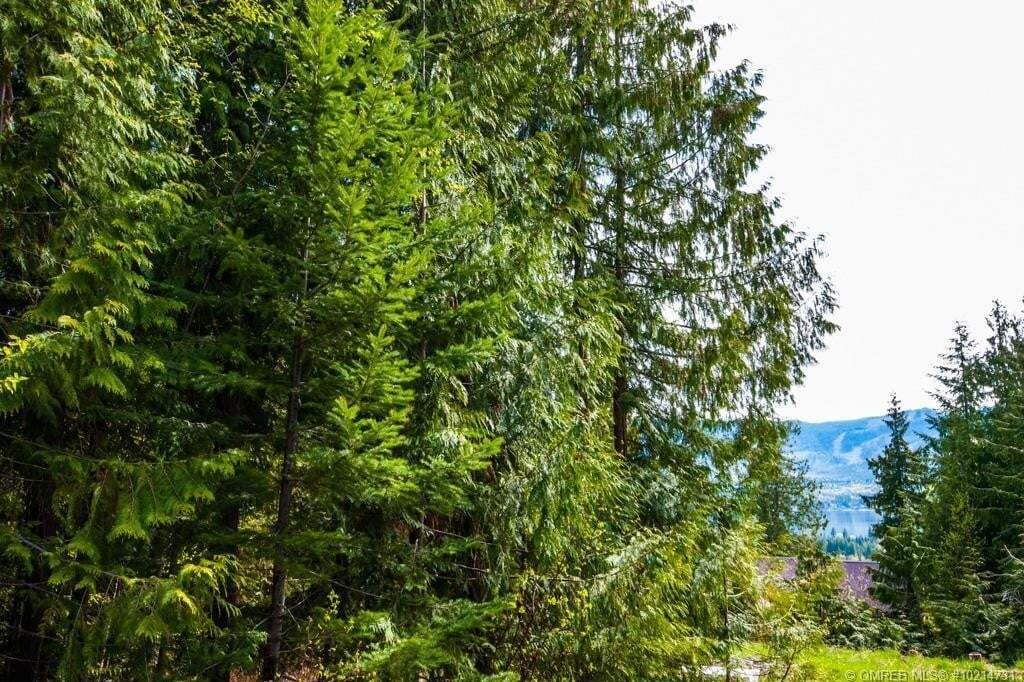 Residential property for sale at Lot 169 Estate Cs Anglemont British Columbia - MLS: 10214731