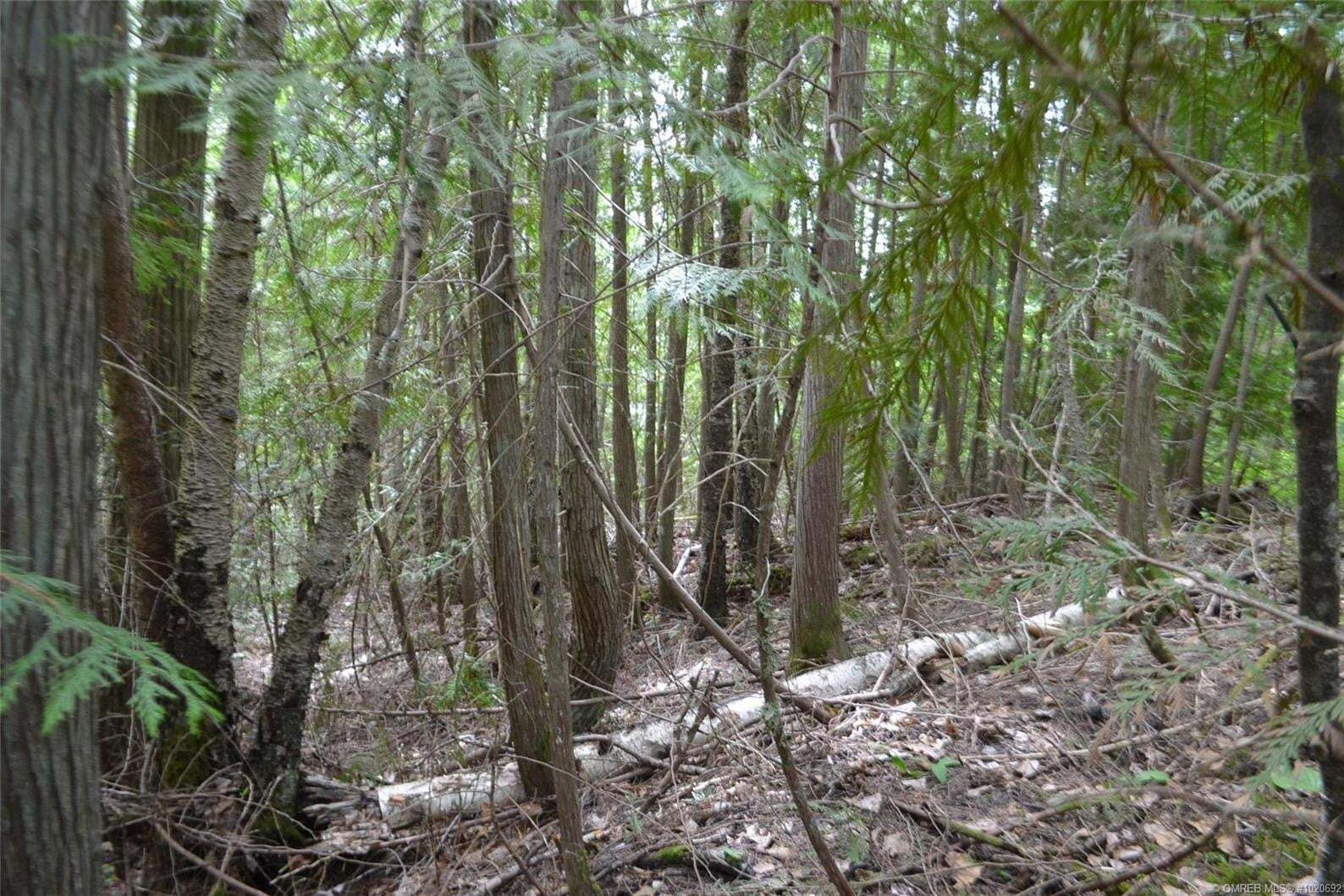 Residential property for sale at Lot 170 Estate Cs Anglemont British Columbia - MLS: 10206921