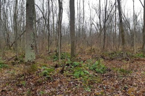 Residential property for sale at Lot 18 Concession 8  Ramara Ontario - MLS: S4977082
