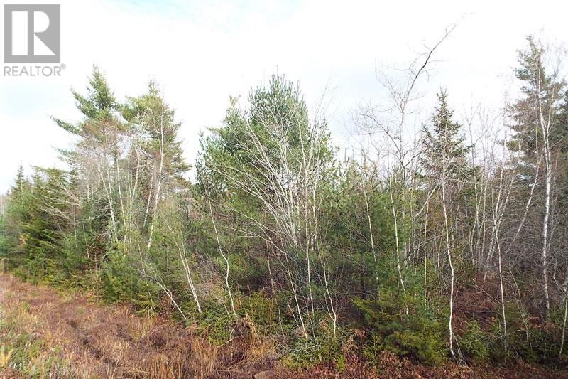 Residential property for sale at 2 Dagley Rd Unit LOT Italy Cross Nova Scotia - MLS: 201625521
