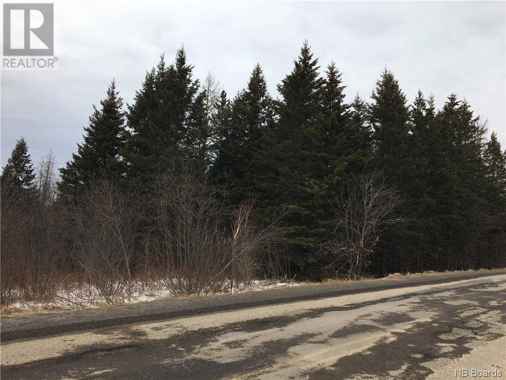 Residential property for sale at  Drurys Cove Rd Unit Lot 2 Sussex New Brunswick - MLS: NB040550