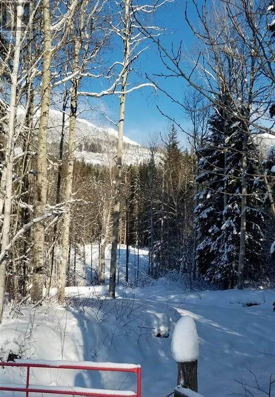 Home for sale at  16 Hy E Unit Lot 2 Valemount British Columbia - MLS: R2428710