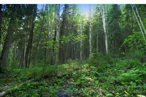 Residential property for sale at 2 Hatchery Rd Unit LOT Horsefly British Columbia - MLS: R2371265