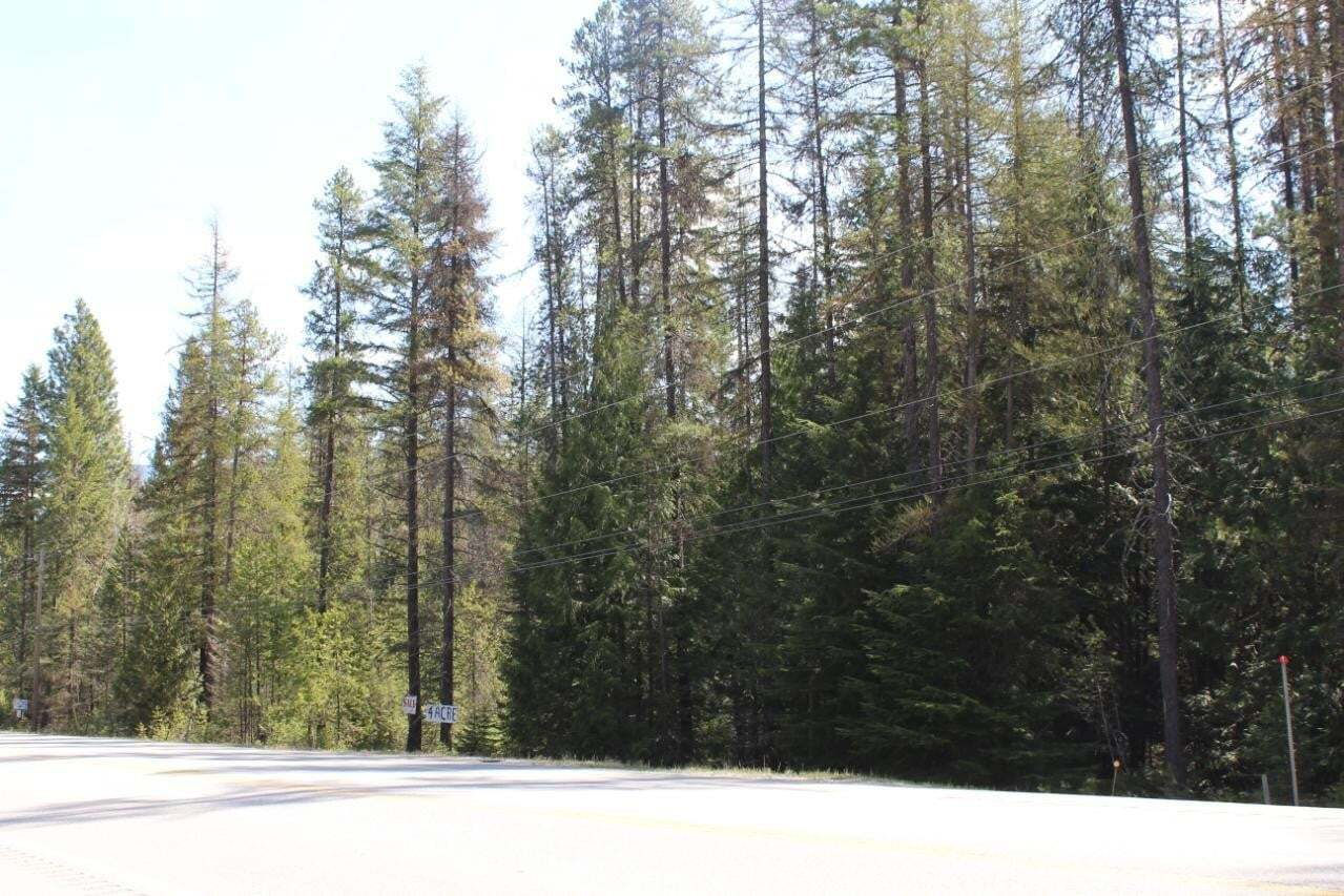 Residential property for sale at Lot 2 Highway 3 95  Cranbrook British Columbia - MLS: 2451805