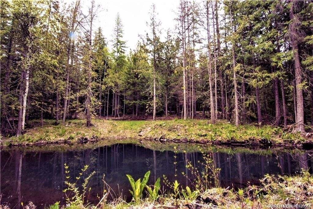 Residential property for sale at Lot 2 Lakeview Arrowcreek Road  Creston British Columbia - MLS: 2451802