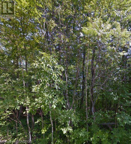 Residential property for sale at  Harkins Rd Unit Lot 23 Northern Bruce Peninsula Ontario - MLS: 255299