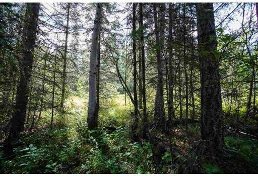 Residential property for sale at  Ludlom Rd Unit Lot 284 Lone Butte British Columbia - MLS: R2387177