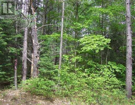 Residential property for sale at  Forestry Rd Unit Lot 3 Chalk River Ontario - MLS: 1174530
