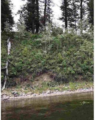 Home for sale at  Guest Rd Unit Lot 3 Cluculz Lake British Columbia - MLS: R2387385