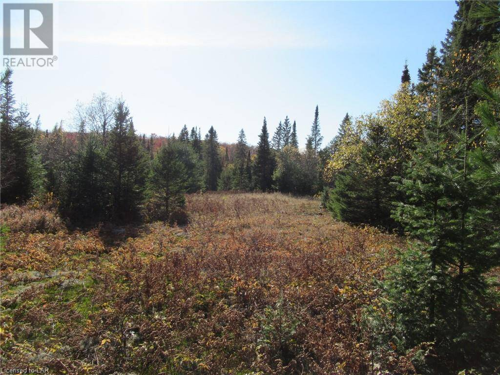 Residential property for sale at  Whitney Rd Unit Lot 3 Perry Ontario - MLS: 227909