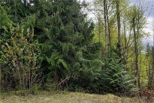 Residential property for sale at LOT 324 Aspen Rd Anglemont British Columbia - MLS: 10181514