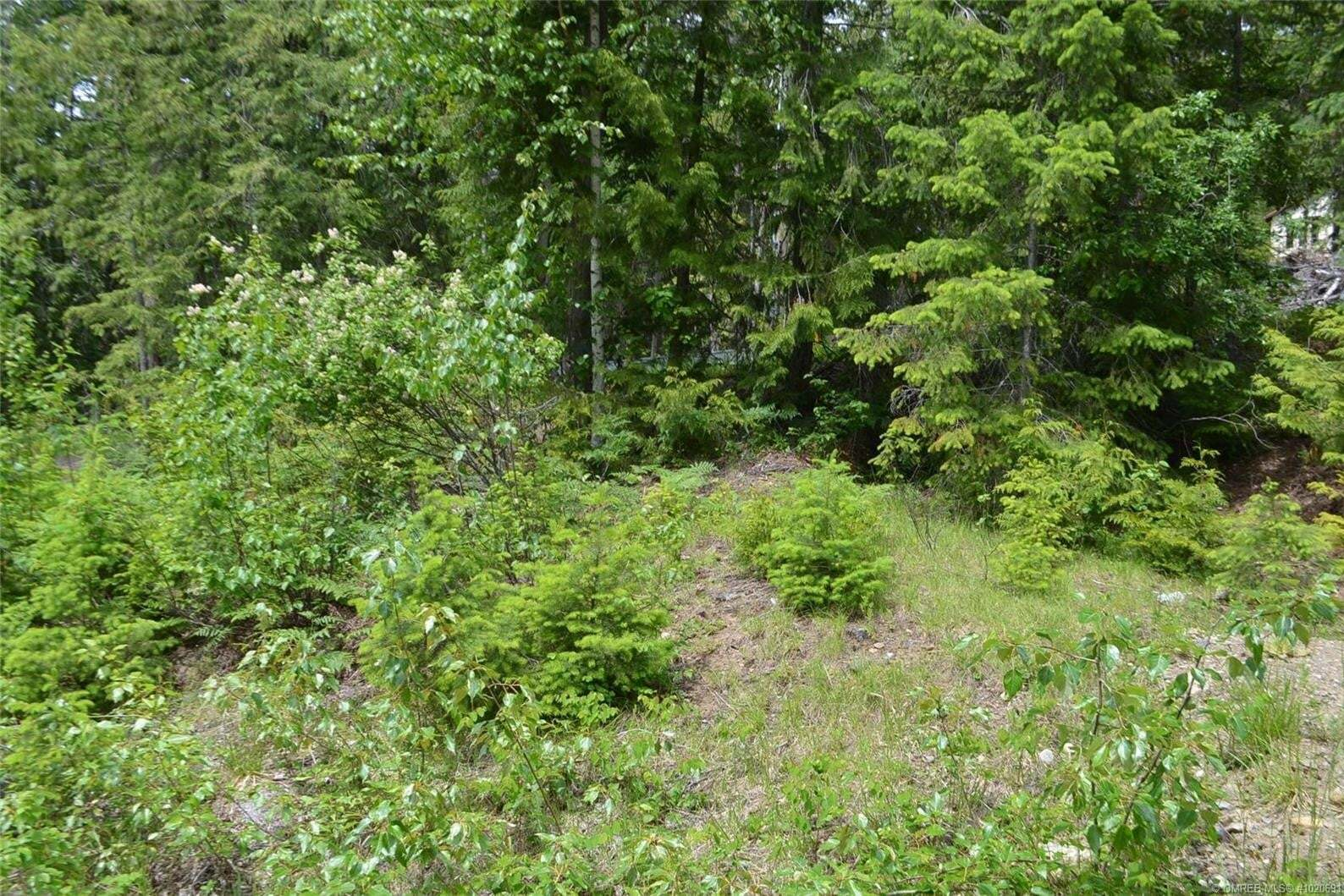Residential property for sale at Lot 368 Fairview Rd Anglemont British Columbia - MLS: 10206913