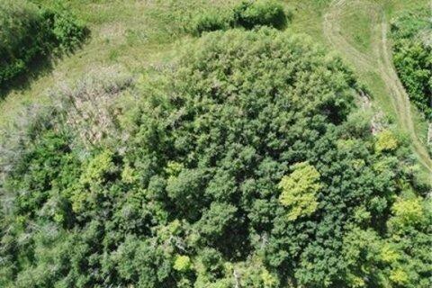 Home for sale at Lot 5 44 Avenue Close Alix Alberta - MLS: CA0158397