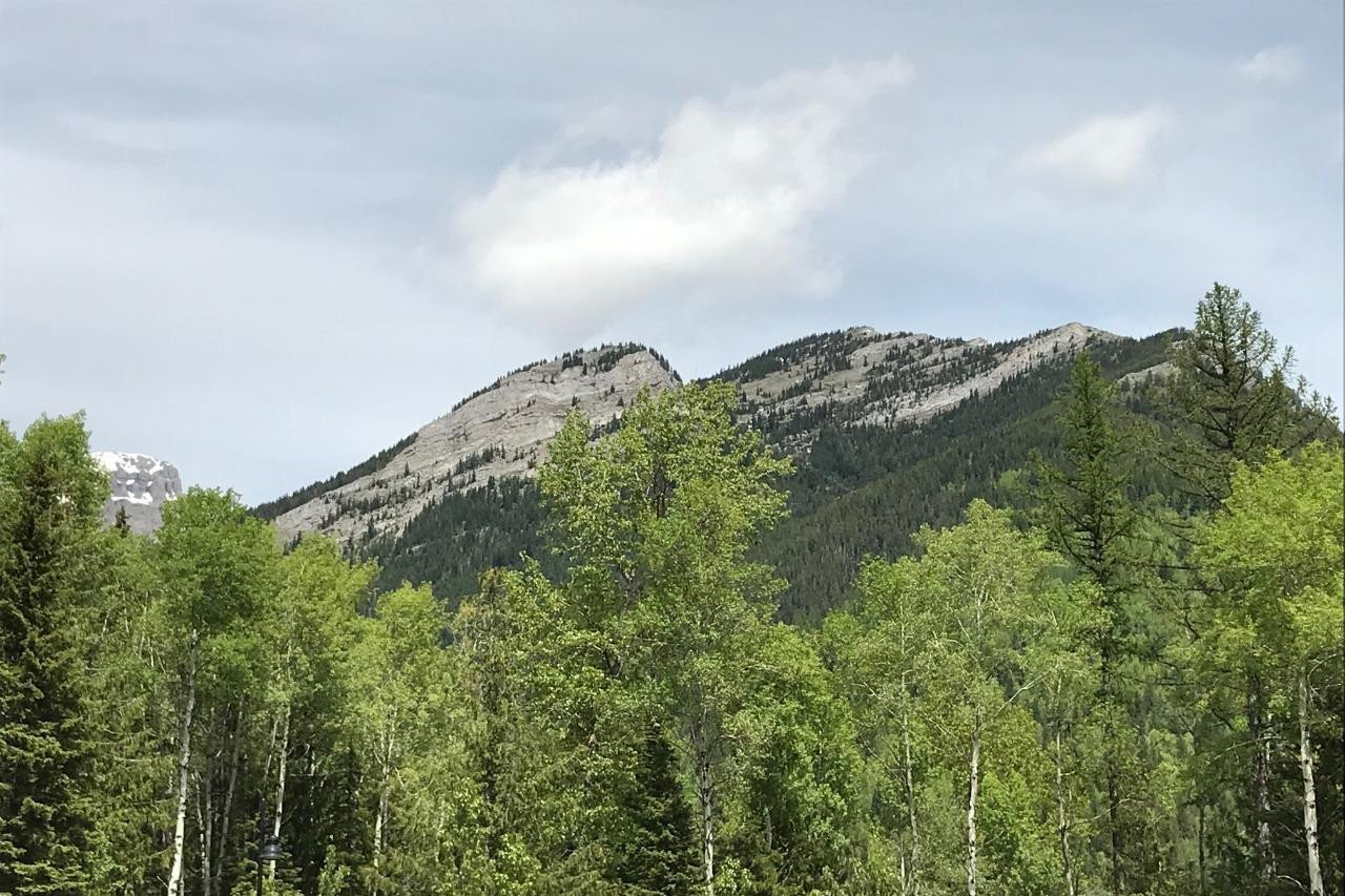 Home for sale at 9 Alpine Trail Place  Unit Lot 5 Fernie British Columbia - MLS: 2434306