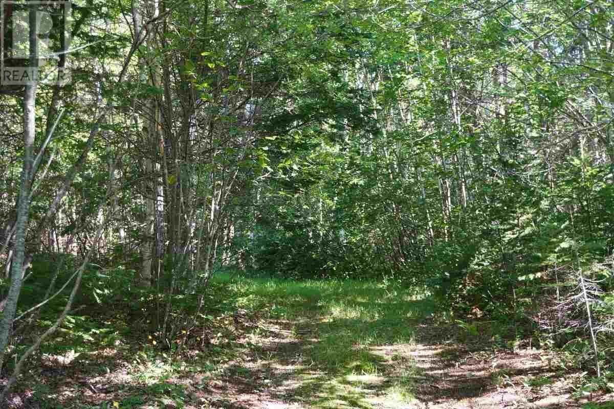 Home for sale at 5 Marble Mountain Rd Unit LOT Lime Hill Nova Scotia - MLS: 202015329