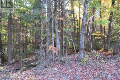 Residential property for sale at  Whitney Rd Unit Lot 5 Perry Ontario - MLS: 227822