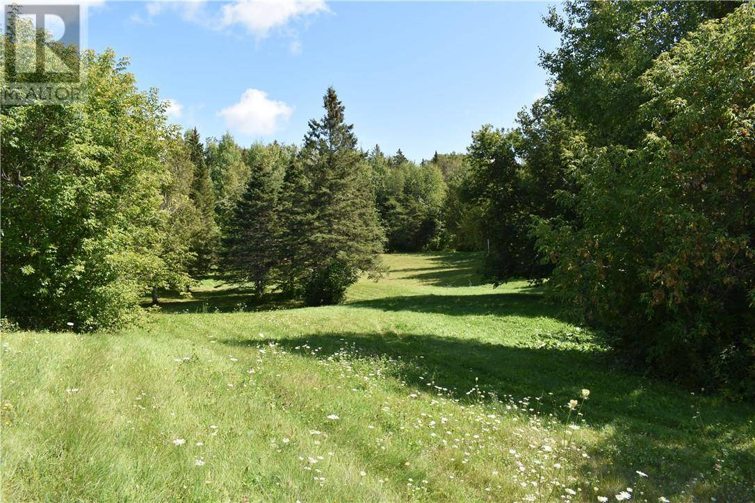 Lot -  560 Route, Williamstown   Image 1