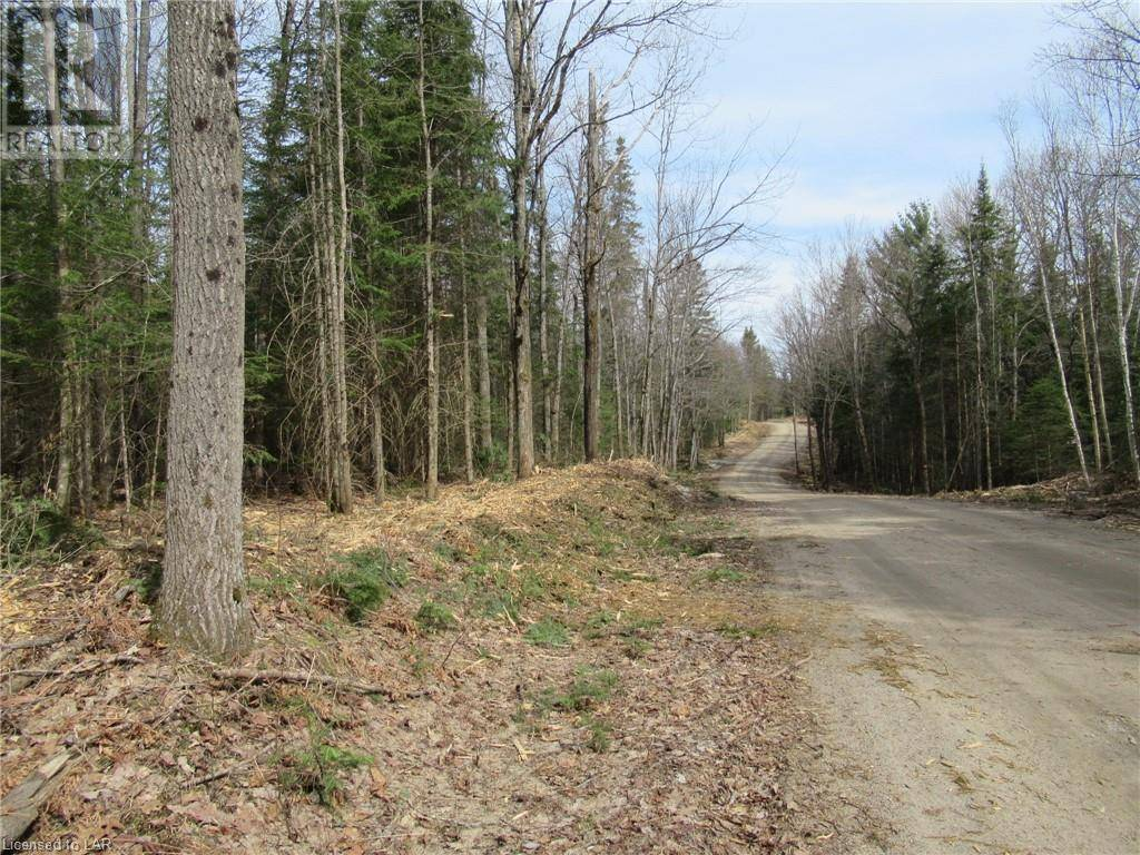 Residential property for sale at  Birchdale Rd Unit Lot 6 Emsdale Ontario - MLS: 254434