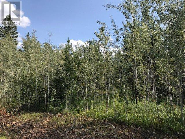 Residential property for sale at  Jardine Rd Unit Lot 6 Cluculz Lake British Columbia - MLS: R2452203