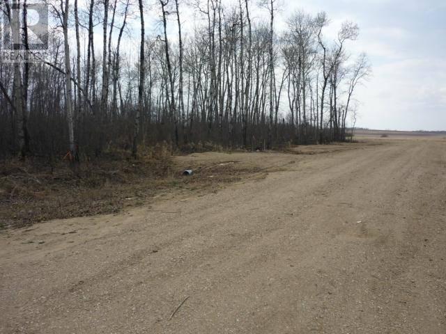 Home for sale at  Undefined Northwest Acres Unit Lot 6 St. Brieux Saskatchewan - MLS: SK768786