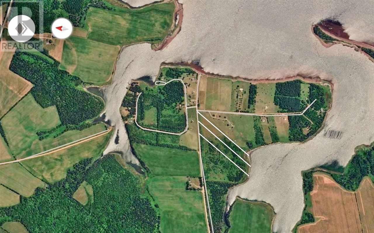 Lot-7 -  Willie Birch Hill, Birch Hill | Image 2