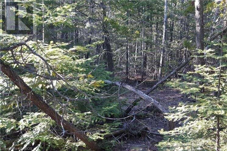 Residential property for sale at 8 Dorcas Bay Rd Unit LOT Northern Bruce Peninsula Ontario - MLS: 258306