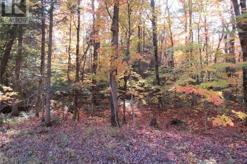 Home for sale at  Whitney Rd Unit Lot 8 Perry Ontario - MLS: 227810