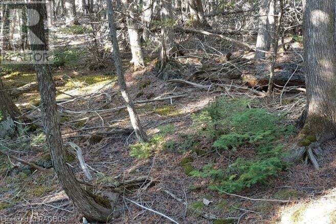 Residential property for sale at 9 Dorcas Bay Rd Unit LOT Northern Bruce Peninsula Ontario - MLS: 260247
