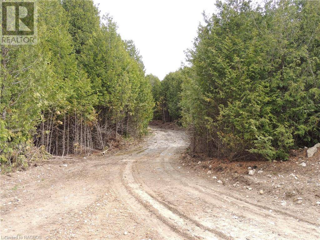 Home for sale at  Highway 10 Hy Unit Lot 90 Chatsworth (twp) Ontario - MLS: 230964