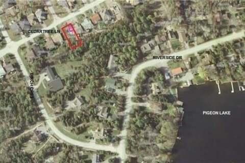Residential property for sale at Lot 95 Cedartree Ln Kawartha Lakes Ontario - MLS: X4345321