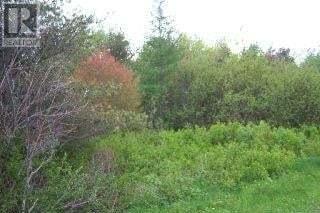 Home for sale at LOT B Bonair St Grande Digue New Brunswick - MLS: M106758